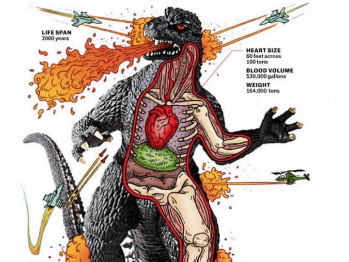 Tutta la verità su Godzilla