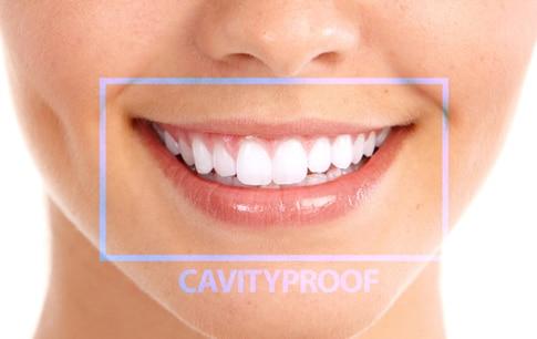 elite-daily-keep-32-cavity
