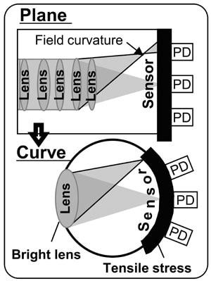 sony sensore curvo 2