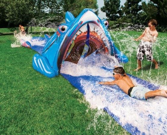 Accessori per giardino - scivolo squalo