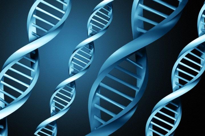 Quanta memoria è immagazzinata in un corpo umano? (video)