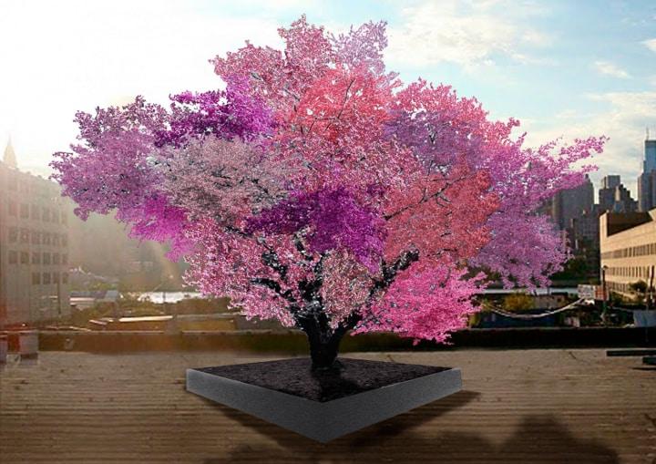 L'albero che produce 40 tipi di frutta