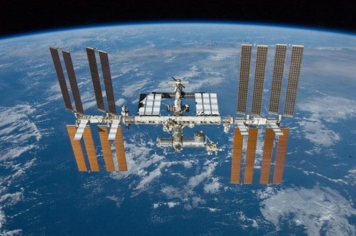 Plancton marino trovato sulla superficie dell'ISS