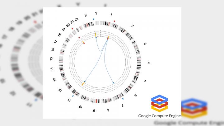 google genimics fhd