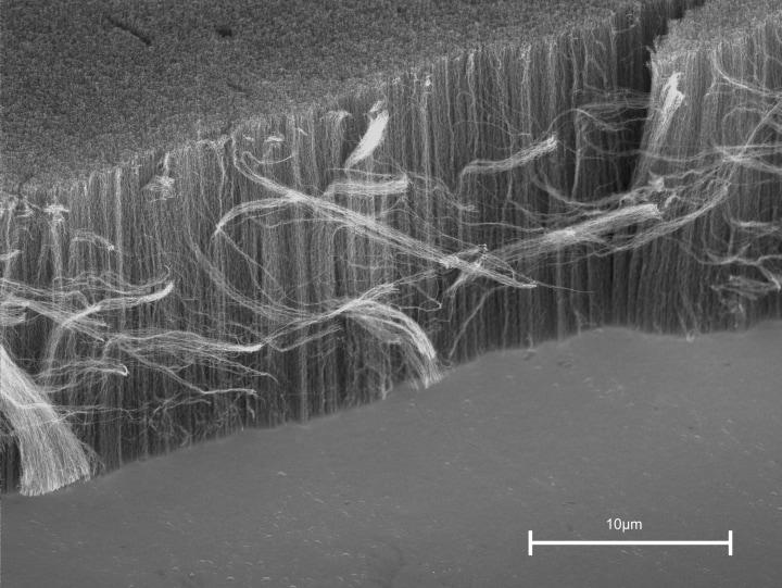 nanotubi fhd