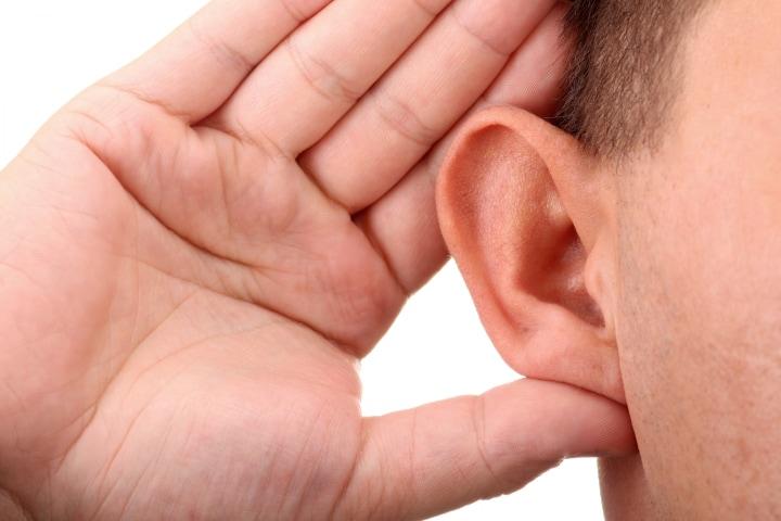 orecchie fhd