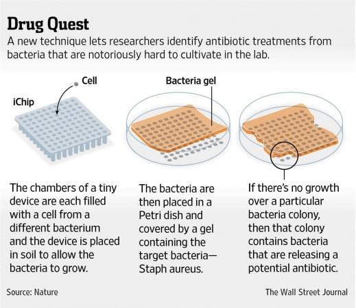 antibiotico 1
