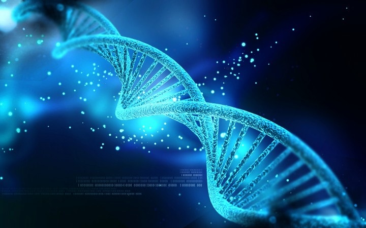 Microsoft ha codificato nel DNA un video HD degli OK Go!