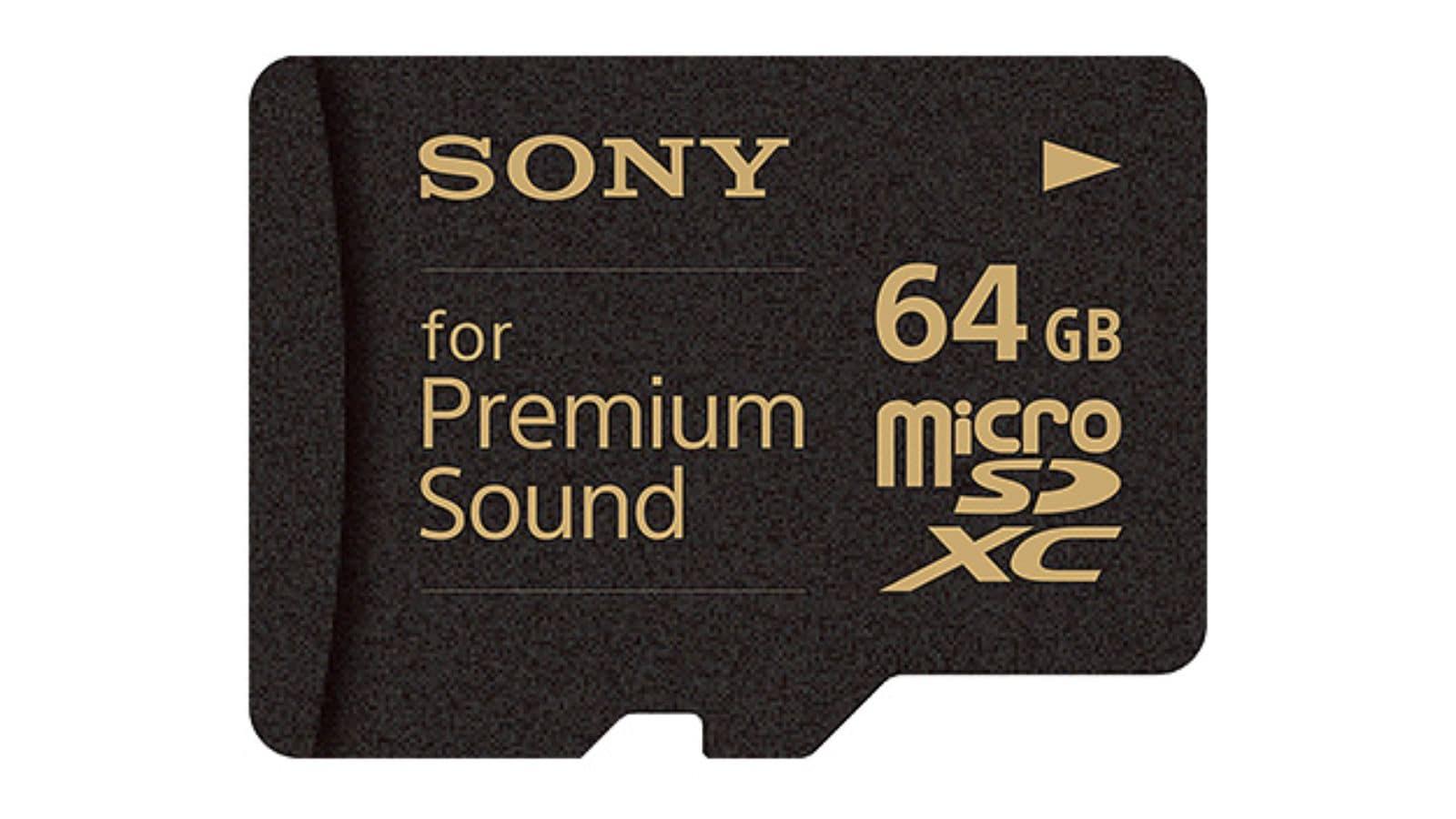Quali schede Micro SD per i nostri DAP? Sony-sd-per-audiofili