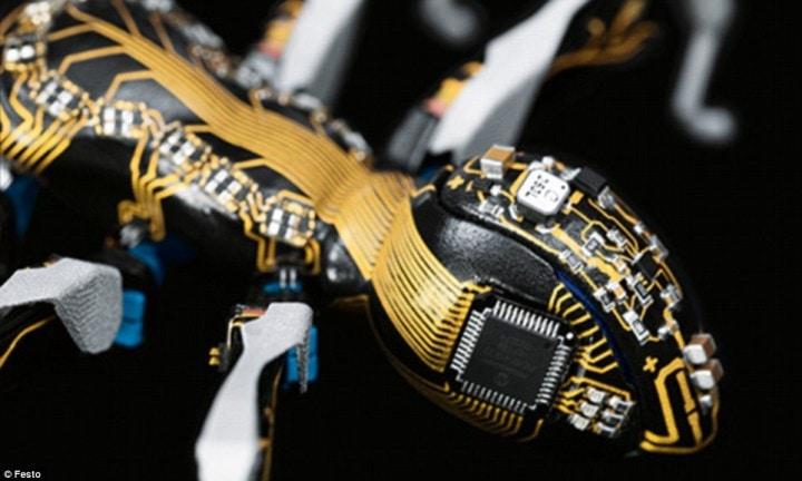 formiche bioniche