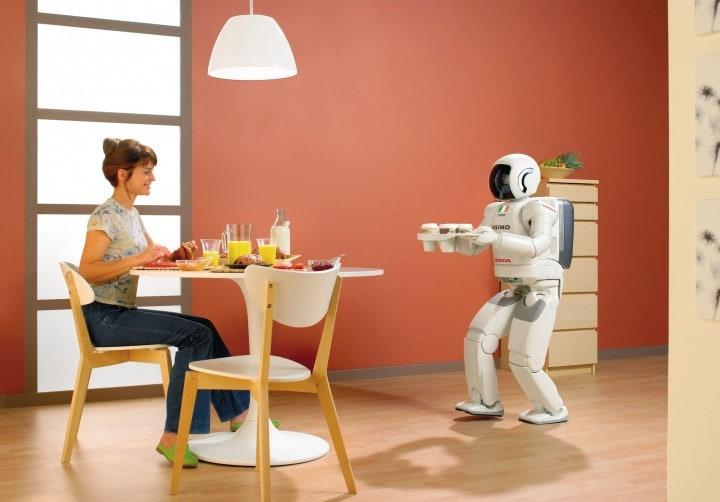 robot domestico
