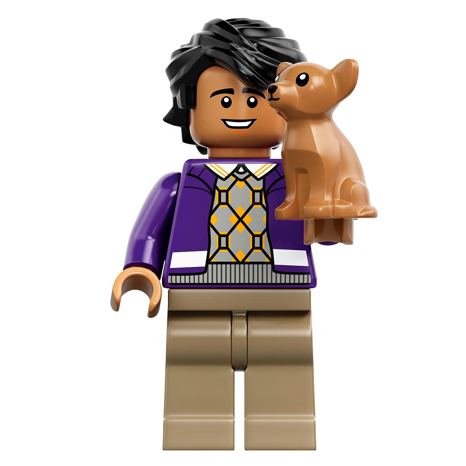 The Big Bang Theory LEGO Raj
