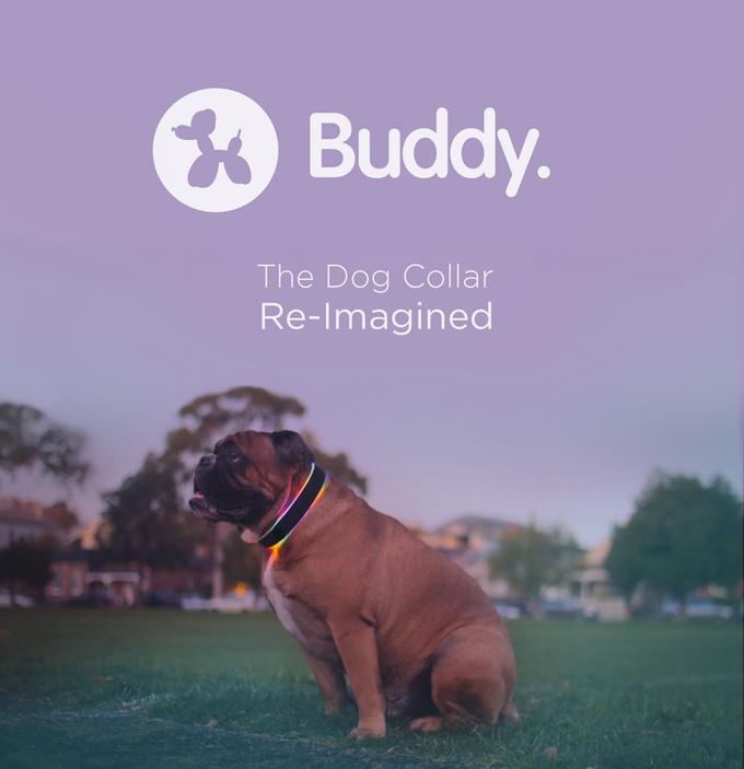Buddy è un collare per cani con dentro più tecnologia del tuo PC (video)