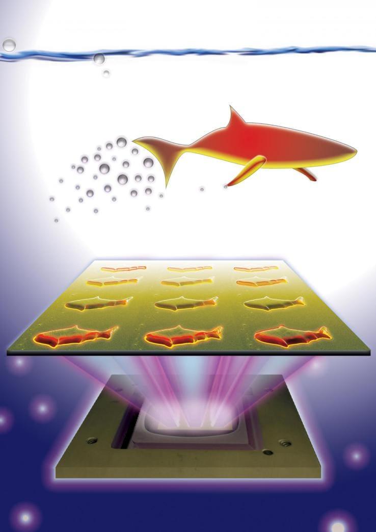 micro pesci robot