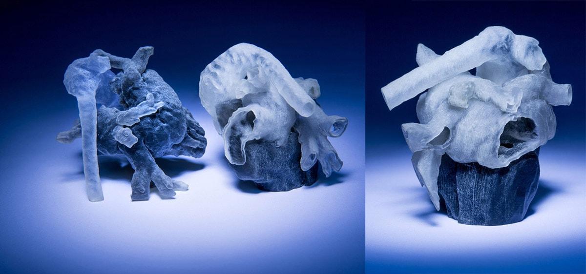 Cuori stampati in 3D