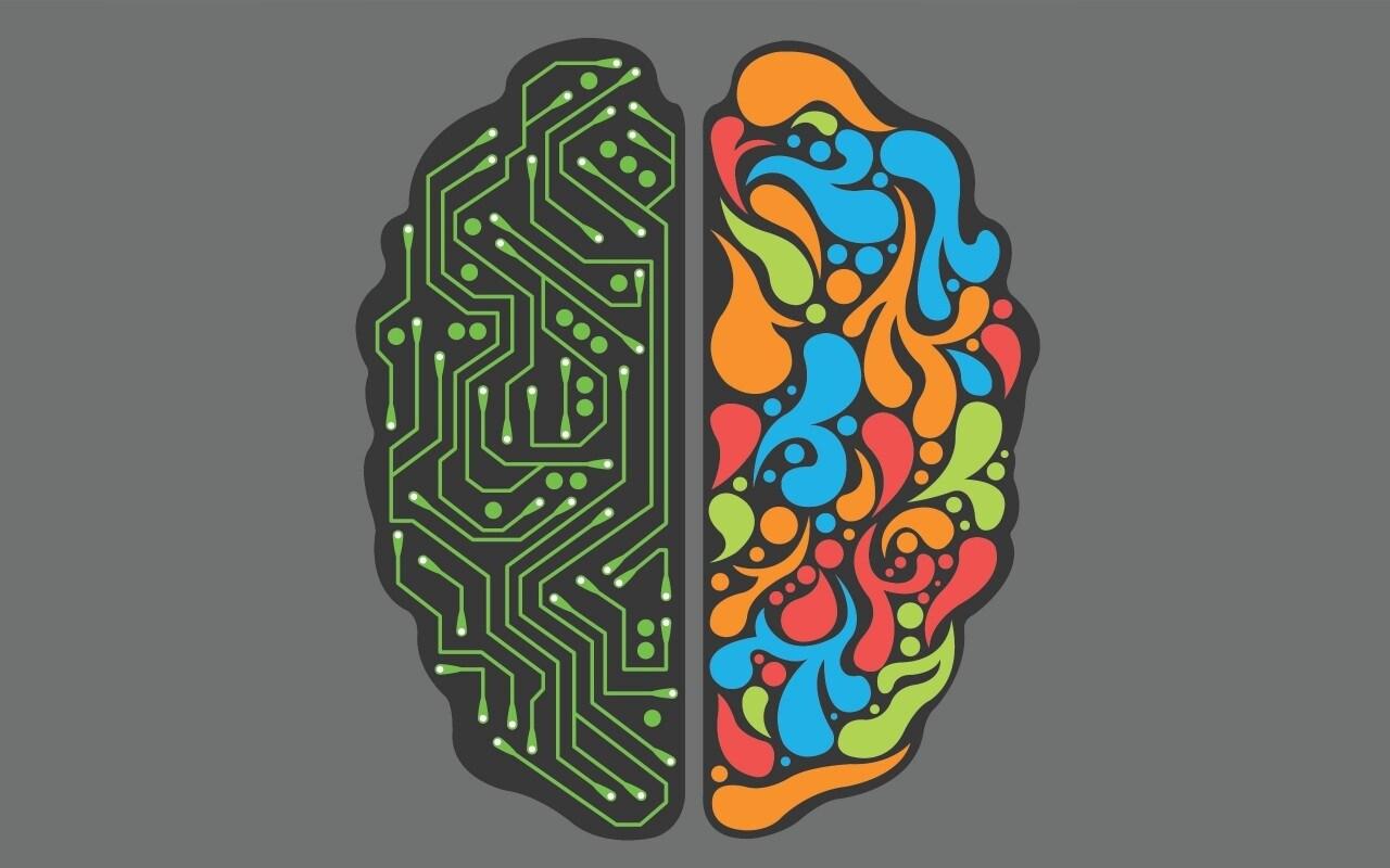 cervello final