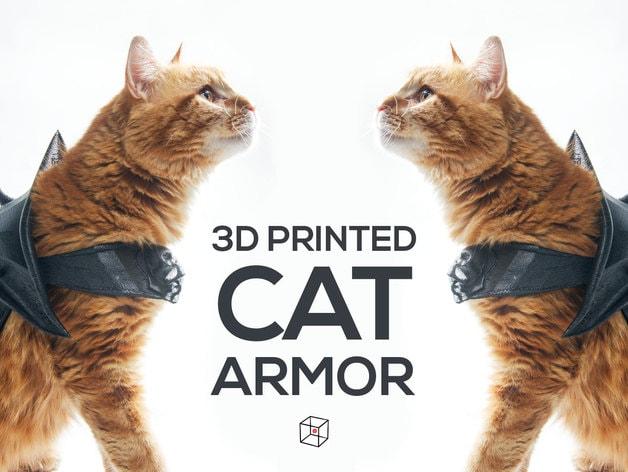 Armatura da gatto (1)