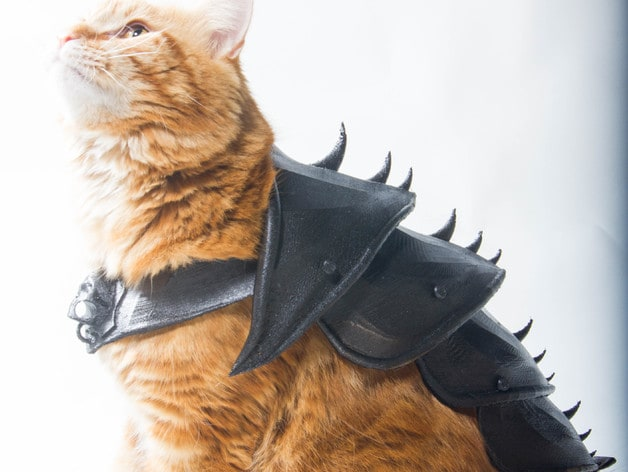 Avete una stampante 3D? Non potete negare al vostro gatto la sua armatura! (foto)