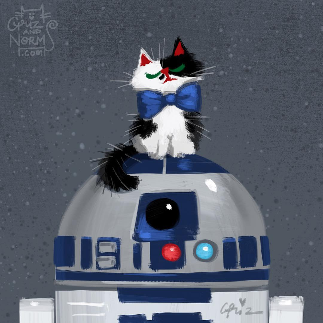 Anche i personaggi di Star Wars hanno i loro gatti (foto)