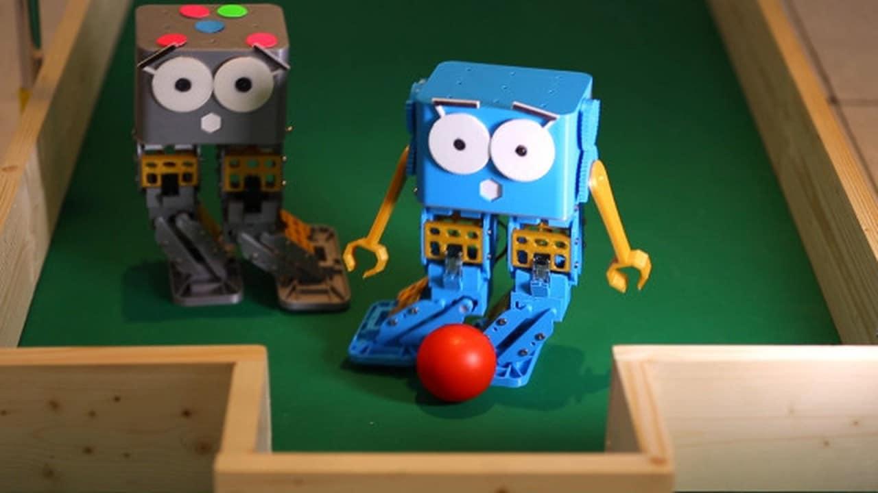 Marty, il robot economico per chi si avvicina alla programmazione (video)