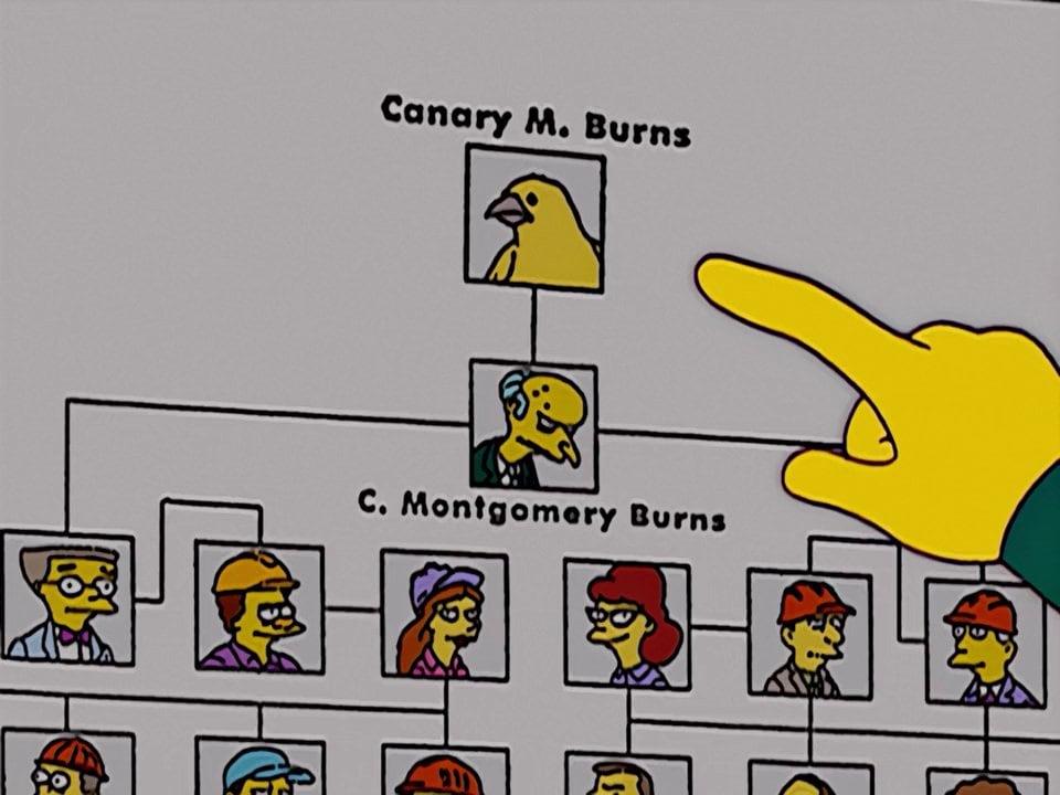 Canarino M Burns