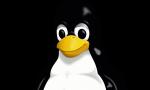 linux final