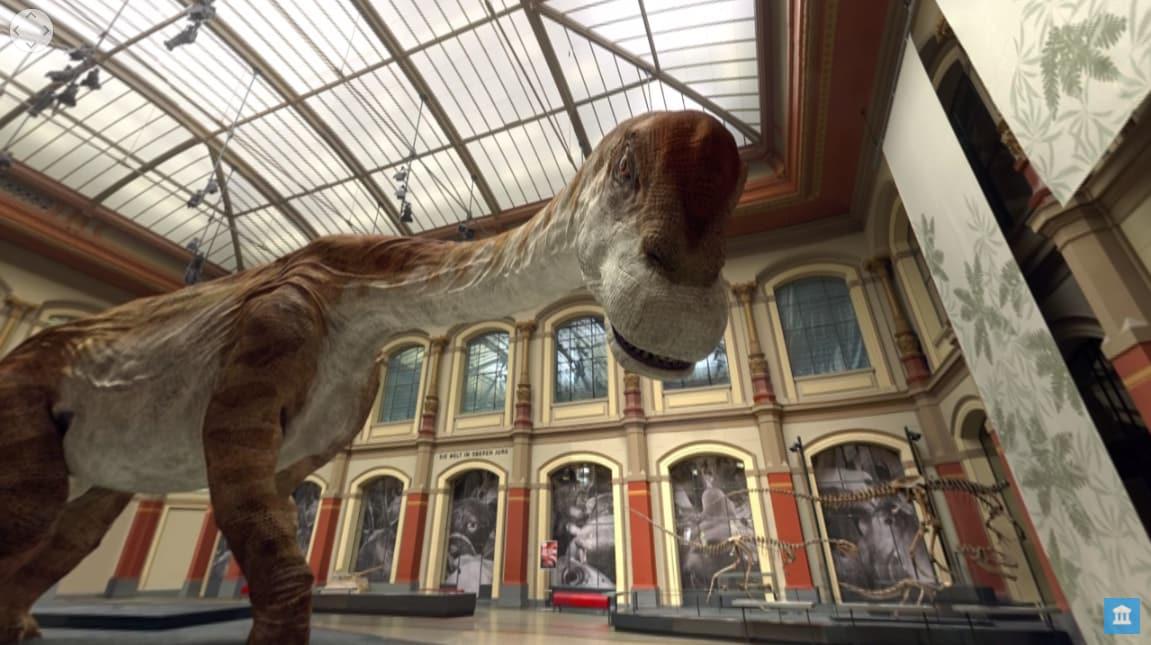 Google Arts and culture storia naturale