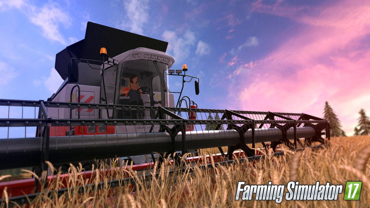 Farming Simulator 17 (6)