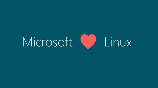 Microsoftentra nella Linux Foundation: passo storico a 15 anni dalla filosofia Ballmer
