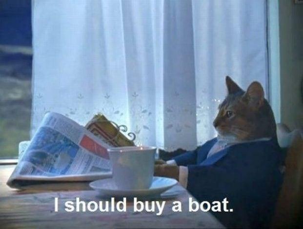 10 Meme Storici Di Gatti Nel World Cat Day Smartworld