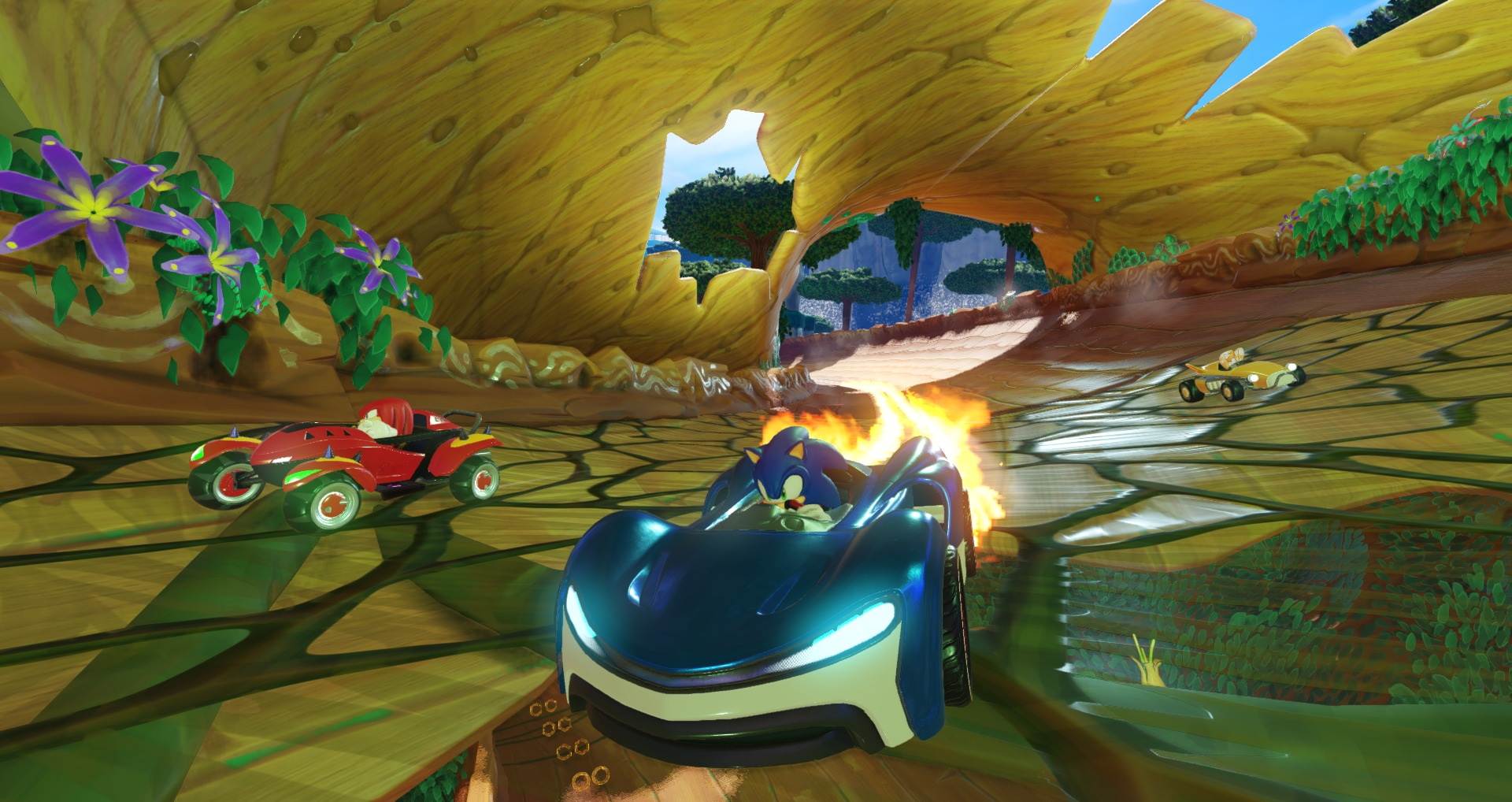 Team_Sonic_Racing_-_1_1527074921