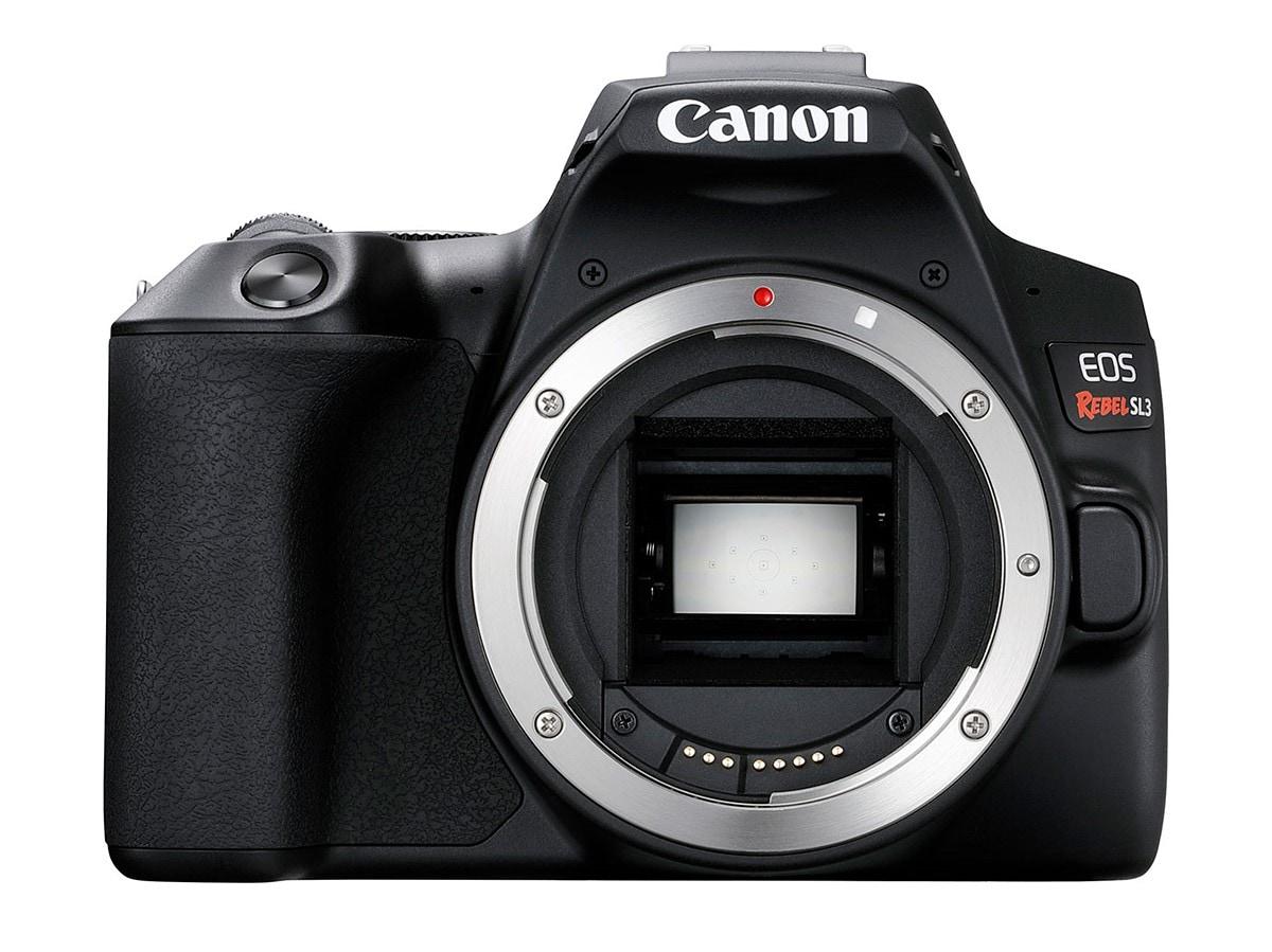 Canon EOS 250D: piccolissima ma ha tutto quello che serve ad una reflex! (foto)