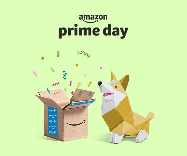 L'Amazon Prime Day di quest'anno sarà lungo 5 mesi e prenderà il via il 6-7 agosto
