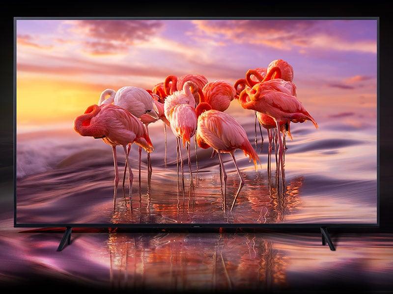 """Date un tono al vostro salotto! Miglior prezzo di sempre per il TV QLED da 65"""" di Samsung"""