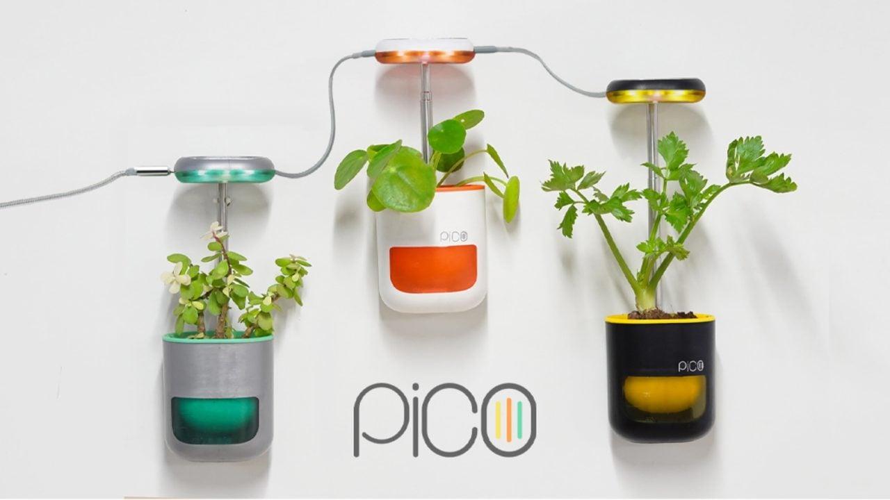 Coltiva un orto domestico con Pico, parola di pollice verde! (foto)